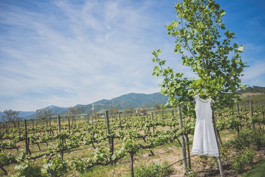 fotografo matrimonio casablanca-viña -santiago (18)