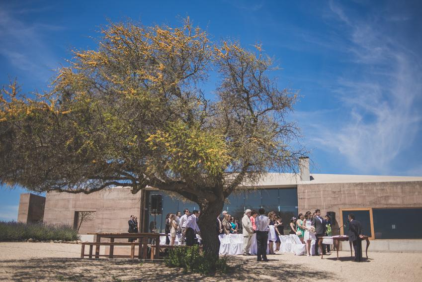 fotografo matrimonio casablanca-viña -santiago (38)