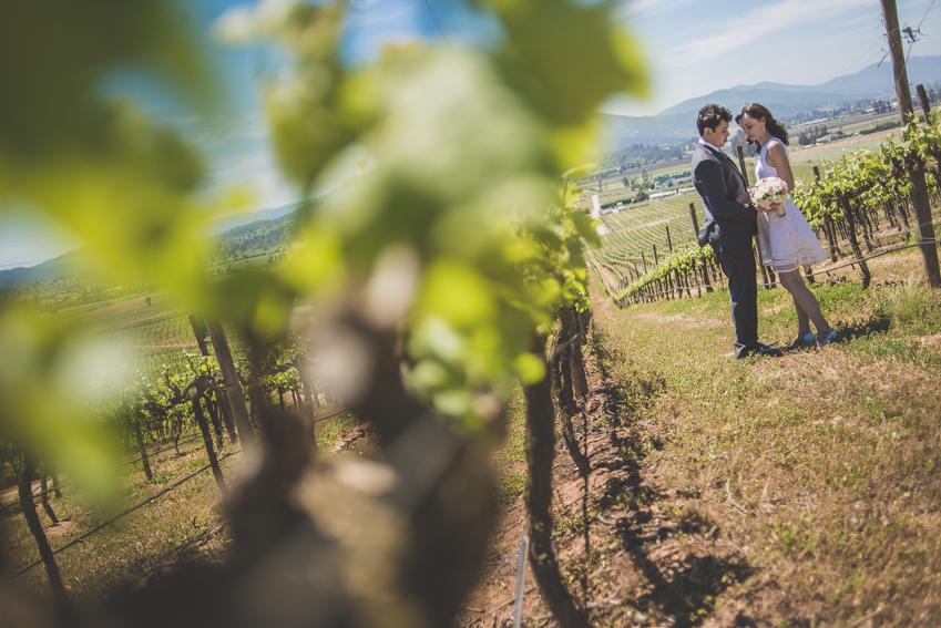 fotografo matrimonio casablanca-viña -santiago (62)